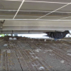Bird Netting - Aantex Pest Control
